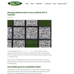 Expert Weed Prevention Advice for Artificial Turf in Vacaville