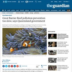Great Barrier Reef pollution prevention too slow, says Queensland government