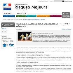 Virus Ebola : la France prend des mesures de prévention