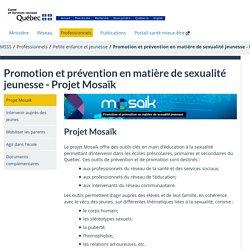 Projet Mosaïk - Promotion et prévention en matière de sexualité jeunesse - Projet Mosaïk - Professionnels de la santé - MSSS
