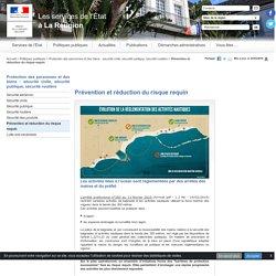 Prévention et réduction du risque requin - Les services de l'Etat à La Réunion