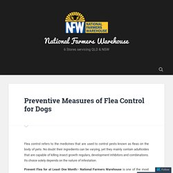 Preventive Measures of Flea Control for Dogs – National Farmers Warehouse