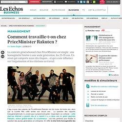 PriceMinister Rakuten : Atout et risques de l'uniformité générationelle (moins de 30 ans)
