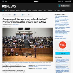 Can you spell like a primary school student? Premier's Spelling Bee crowns best in NSW