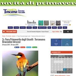 3ª Fiera Primaverile degli Uccelli - Terranuova Bracciolini (Arezzo) - Eventi in Toscana
