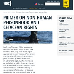 Primer on Non-Human Personhood and Cetacean Rights