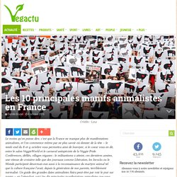 Les 10 principales manifs animalistes en France – Vegactu