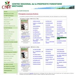 CRPF Bretagne - arbre forêt - principales essences forestières bretonnes