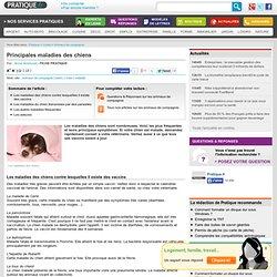 Principales maladies des chiens - Animaux de compagnie