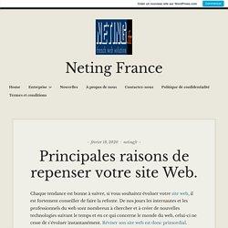 Principales raisons de repenser votre site Web. – Neting France