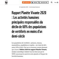 Rapport Planète Vivante 2020 : Les activités humaines principales responsables du déclin de 68% des populations de vertébrés en moins d'un demi-siècle
