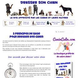 5 principes de base pour bien dresser son chien