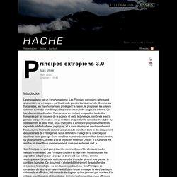 Max More : Principes extropiens 3.0 (Hache/essais)