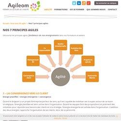 Les 7 principes agiles - Centre de formations Agileom