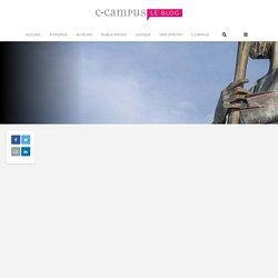 Concept & principes pédagogiques – 4 : le conflit socio cognitif – Le blog de C-Campus
