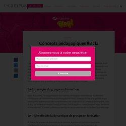 Concept & principes pédagogiques – 8 : la dynamique de groupe – Le blog de C-Campus