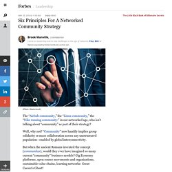 Six Principles For A Networked Community Strategy