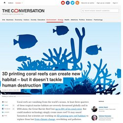3D printing coral reefs can create new habitat – but it doesn't tackle human destruction