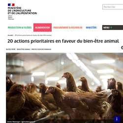 20 actions prioritaires en faveur du bien-être animal