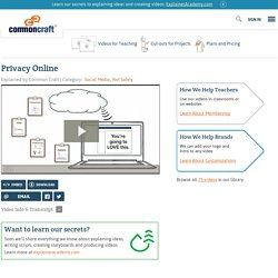 Privacy Online Explained by Common Craft