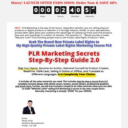PLR Marketing Step-By-Step Guide 2.0 PLR