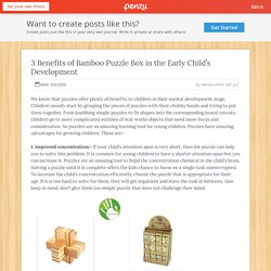 3 Benefits of Bamboo Puzzle Box in the Early Child's Development