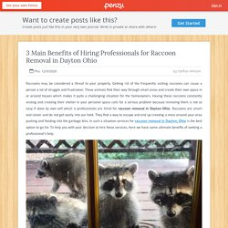 Hiring Benefit of Raccoon Removal Professionals in Dayton Ohio