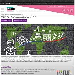 PRO FLE : Professionalisation en FLE