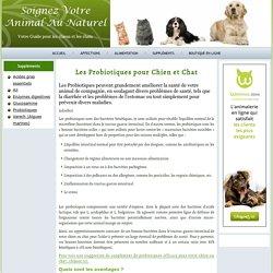 Probiotiques Pour Chien et Chat: Pourquoi en Donner et Comment - Soignez Votre Animal Au Naturel