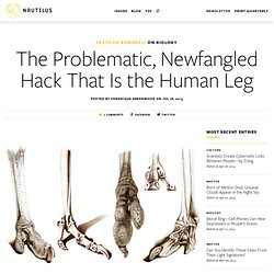 The Problematic, Newfangled Hack That Is the Human Leg
