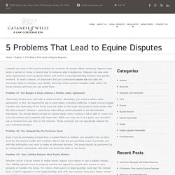 5 Problems That Lead to Equine Disputes - Los Angeles Lawyer and Law Firm