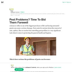 Pest Problems? Time To Bid Them Farewell – Safe Pest Control