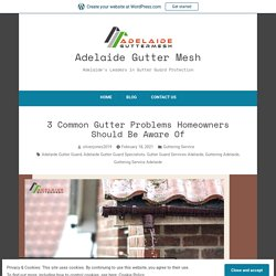 3 Common Gutter Problems Homeowners Should Be Aware Of – Adelaide Gutter Mesh