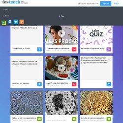 Célula Procariota Y Célula Eucariota - Lessons - TES Teach