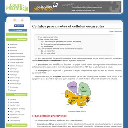 Cellules procaryotes et cellules eucaryotes