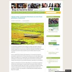Algues vertes : La France désormais au cœur d'une procédure d'infraction