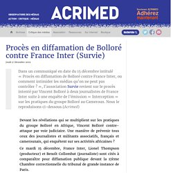 Procès en diffamation de Bolloré contre France Inter (Survie)