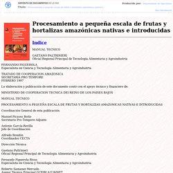 Procesamiento a pequeña escala de frutas y hortalizas amazonicas nativas e introducidas - Indice