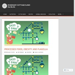 Processed food, obesity and flagella – Rosemary Cottage Clinic Blog