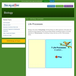Living Cells and Life Processes - Pass My Exams: Easy exam revision notes for GSCE Biology