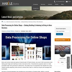 Data Processing for Online Shops - Catalog Building & Indexing to Bring in More Business
