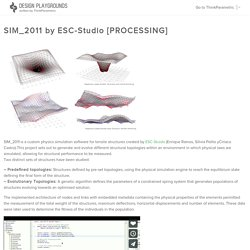 SIM_2011 by ESC-Studio [PROCESSING]