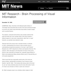 Research - Brain Processing of Visual Information