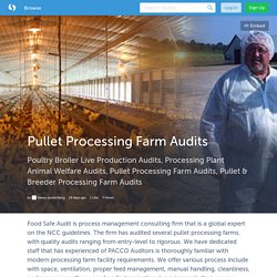 Pullet Processing Farm Audits (with image) · Kaneyzuckerberg
