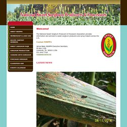 National Sweet Sorghum Producers & Processors Assocaition