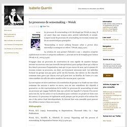 Le processus de sensemaking – Weick