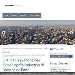 COP 21 : les prochaines étapes après l'adoption de l'Accord de Paris - Gossement