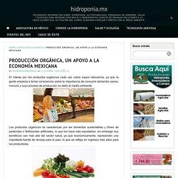 PRODUCCIÓN ORGÁNICA, UN APOYO A LA ECONOMÍA MEXICANA