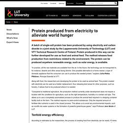 Protein produced from electricity to alleviate world hunger - News - LUT