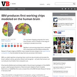 IBM produces first working chips modeled on the human brain